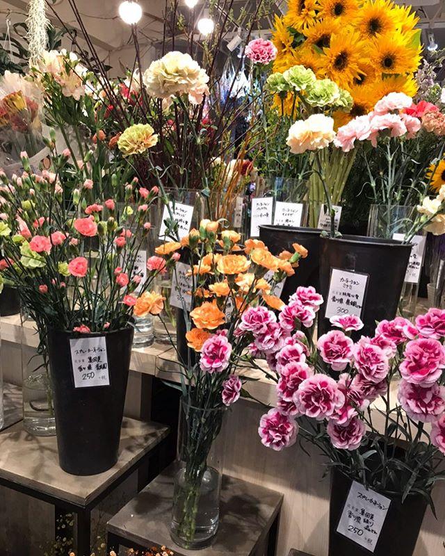 本日は、トキワ街にある花屋のカタリさんにお花を買いに来ました ・ お店はオシャレだし、どの花も綺麗で素敵でした!たくさん綺麗な花があるのでどれを買おうかすごい迷います♪ ・ しかも花ごとに花言葉があり、いろいろ知れて楽しかったです ・ 最近コロナの影響で、世の中落ち込んでいますが、こんな時こそ家族、友人、お世話になってる方など大切に感謝の気持ちを伝えることはすごく大事だと思ってます!!! 自分は『あたりまえはあたりまえじゃない』と思ってるので、言える時にこそ伝えるべきだと思ってます! みなさんも恥ずかしい気持ちがあるかも知れませんが、母の日、日ごろ感謝の気持ちを伝えてみてはどうでしょうか♪ ・ 本日も、通常営業しております! 腰痛で悩まれてる方へ、トキワ整体院では腰痛で悩んでいる貴方の役に立ってれます! ぜひ悩んでる方は、 こちらのホームページを一度チェックして見てください。 ・ 【https://nseitai.com/ 】 ・ 腰痛で悩んでる方からのご連絡お待ちしております! ・ ・ 電話番号【080-9542-8357】 ・ https://nseitai.com/ 【完全予約制】 【電話番号】080-9542-8357 【営業時間】9:00〜21:00 【定休日】不定休 【住所】〒760-0054香川県高松市常磐町1-9-17